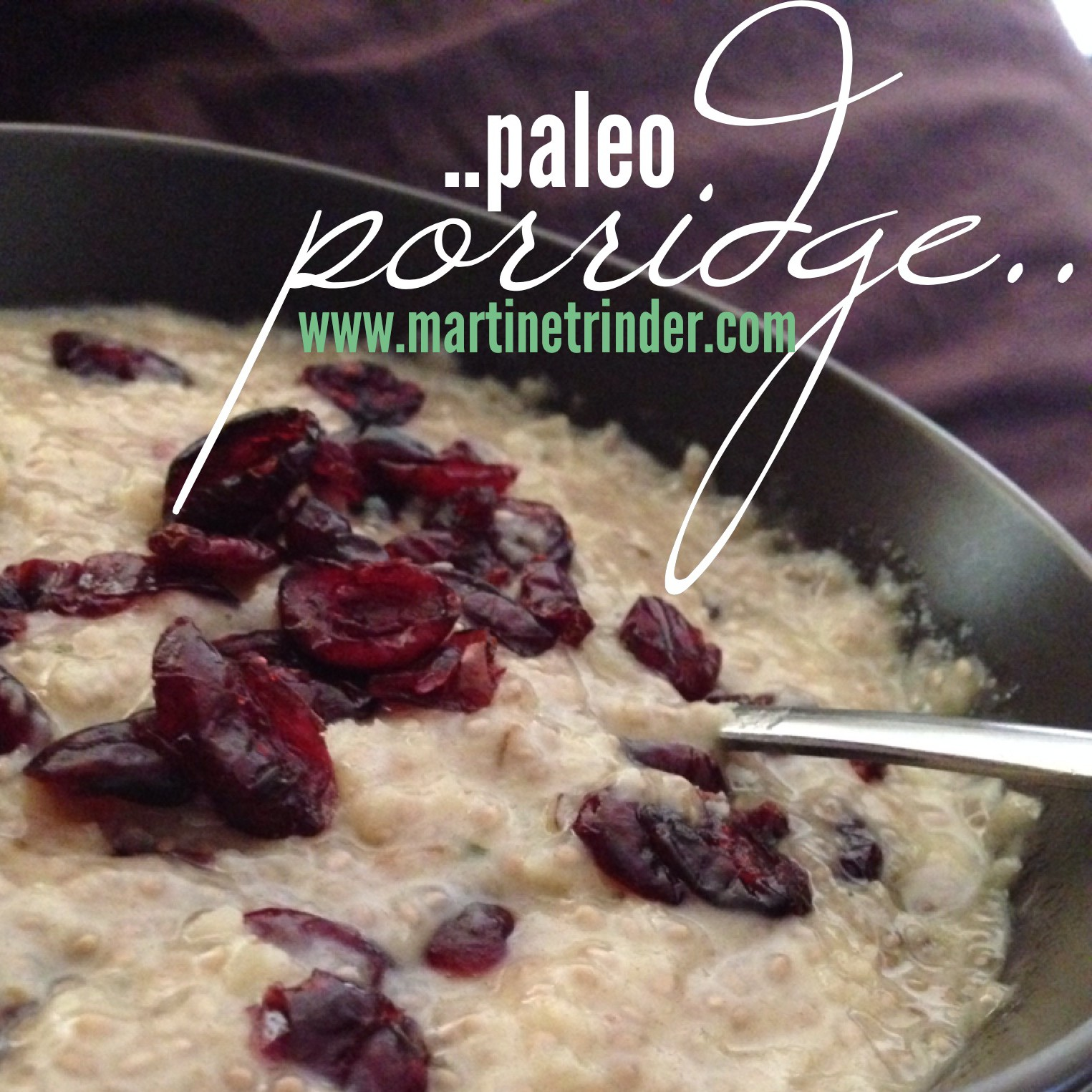 Banana & Cranberry Paleo Porridge