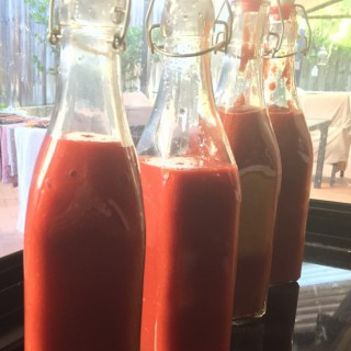 fermented tomato sauce